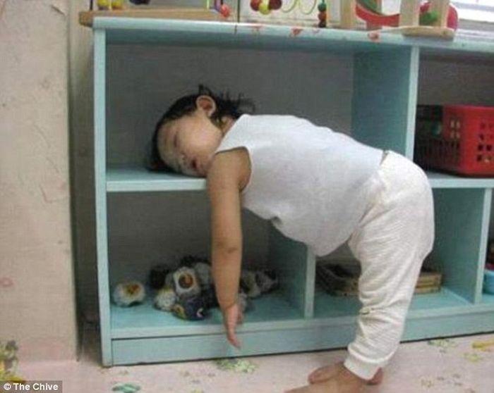 Спят где попало (17 фото)