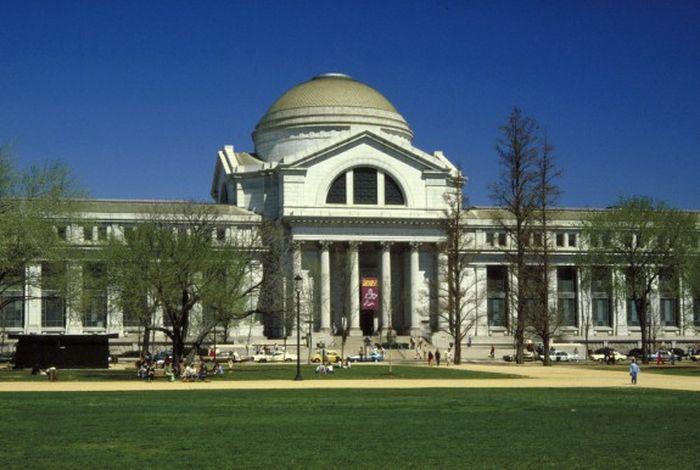 Национальный музей естественной истории (9 фото)