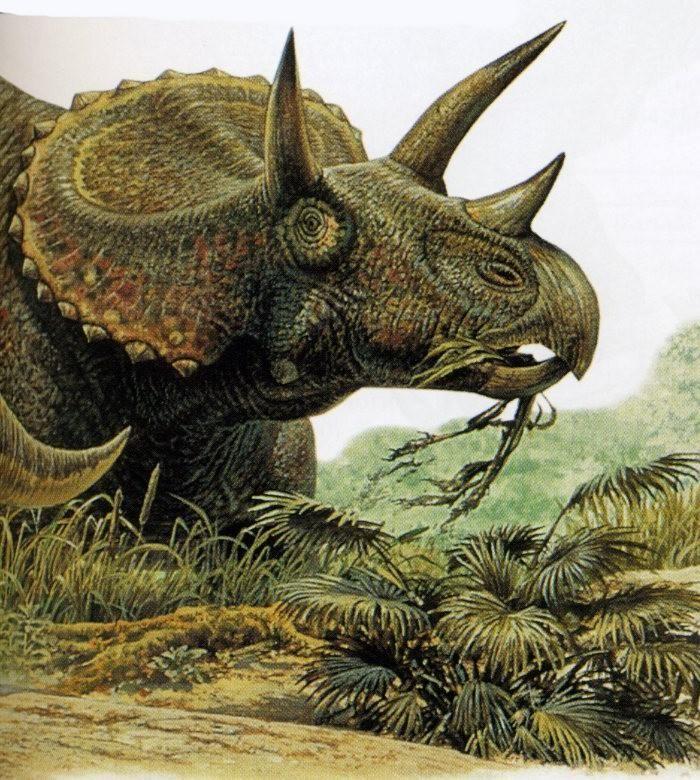 динозавр с рогами картинки чем