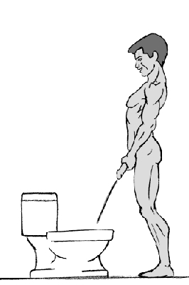 Прокачка рук<br> Это метод грубой силы. Если ваш пенис никак не желает смотреть в нужном направлении, вы можете принудить его к этому силой. Крепко сожмите ствол <br> двумя руками или нажмите на головку пениса, нежно, но твердо, так чтобы ваш друг посмотрел, наконец, вниз или по крайней мере в нужную сторону.<br> Продолжайте удерживать заданную позицию, стараясь не дать ему выскользнуть из рук, иначе все может кончиться разбрызгиванием на стены. Вы также <br> рискуете получить струю прямо в лицо поэтому не стоит отвлекаться. Пусть весь мир подождет.<br> Примечание: В некоторых случаях данный способ может не сработать из-за слишком сильного сжимания выходных каналов на сгибе пениса. Если ваша <br> эрекция достаточно сильная, попробуйте вначале другой способ, иначе вы можете что-то сломать, честно.