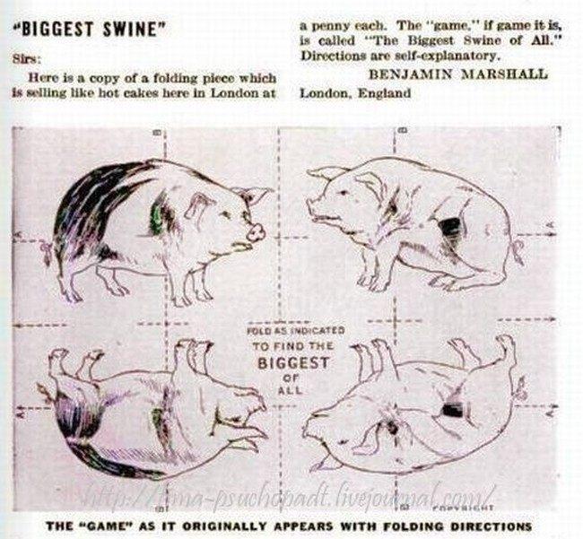 Разрежь свинью и выиграй...(3 фото)