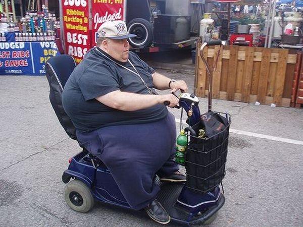 И почему я такой толстый??? (18 фото)