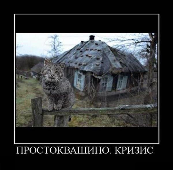 http://de.fishki.net/picsw/102009/30/post/demotivator/demotivator151.jpg