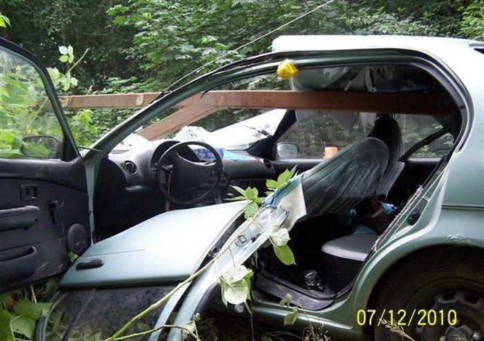 Шлагбаум в лесу не пропустил старенькую Toyota (12 фото)