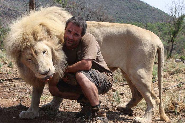 Кевин Ричардсон - заклинатель зверей (13 фото+видео)
