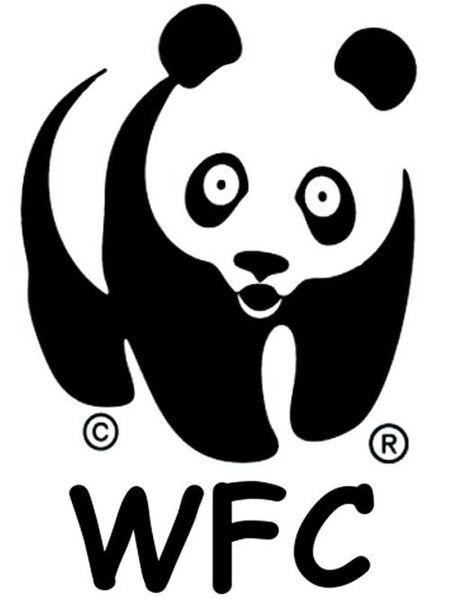 Китайская печать на футболке (2 фото)
