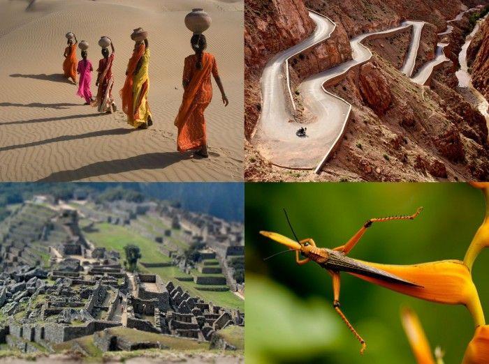 Лучшие фотографии National Geographic за сентябрь 2011 (31 фото)