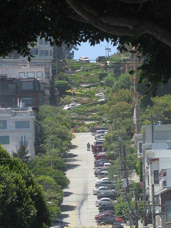 Самая извилистая улица в мире (5 фото)