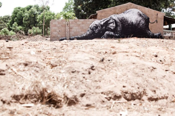 Искусство на улицах Африки (15 фото)