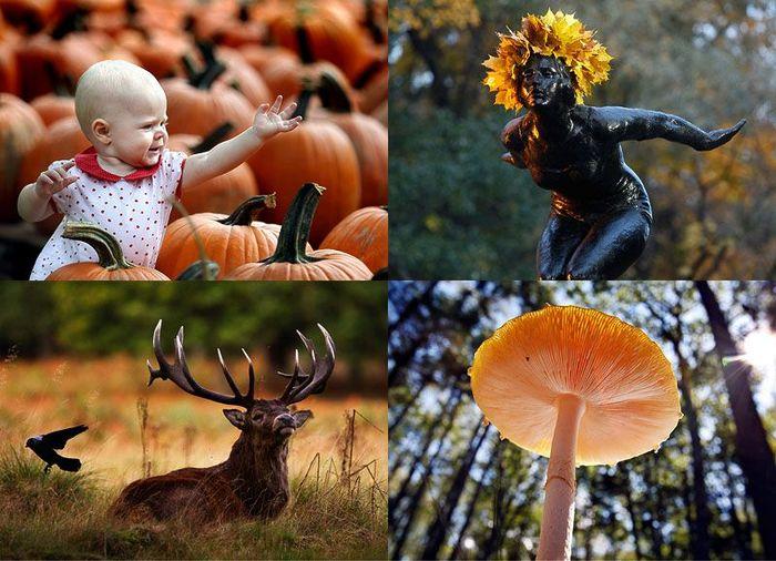 В воздухе витает осень (39 фото + текст)