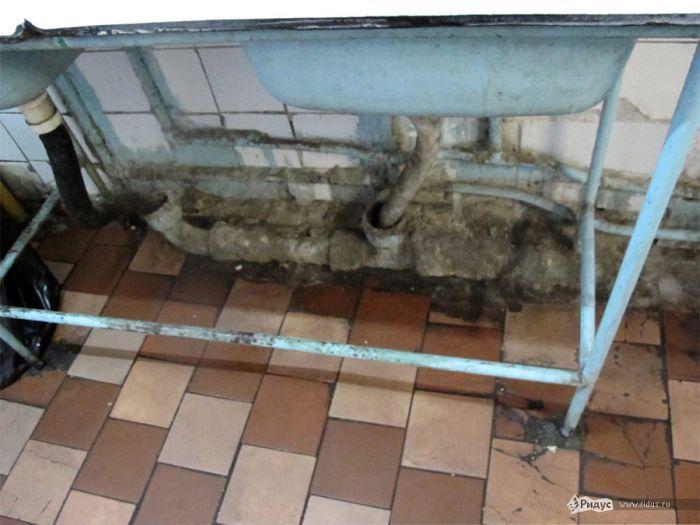 Ужасные условия жизни студентов МГУ (11 фото)
