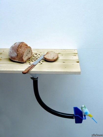 Самые необычные кухонные вещи (60 фото)
