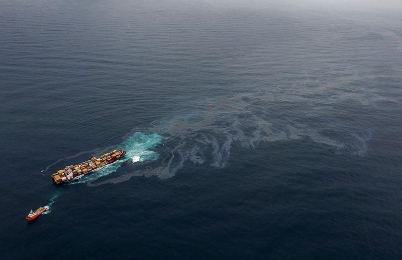 s n01 10130414 Разлив нефти у берегов Новой Зеландии