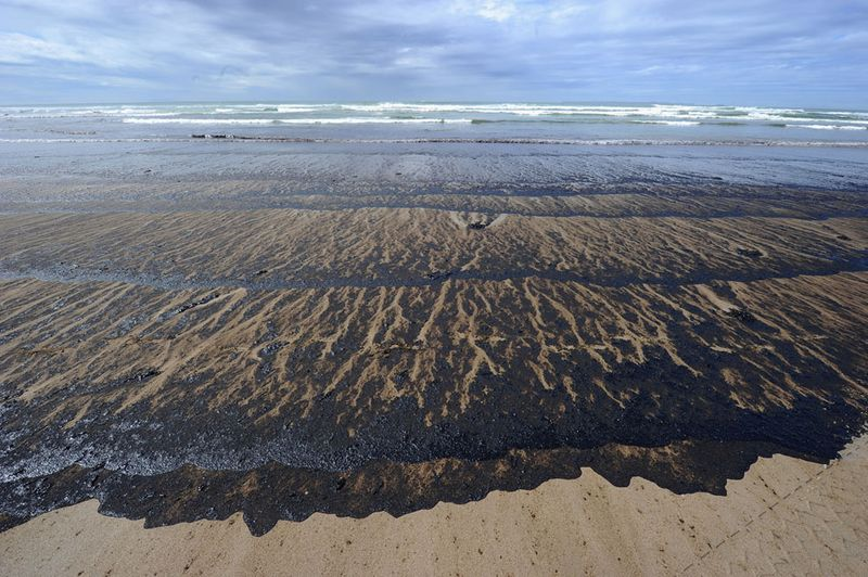 s n18 29108094 Разлив нефти у берегов Новой Зеландии