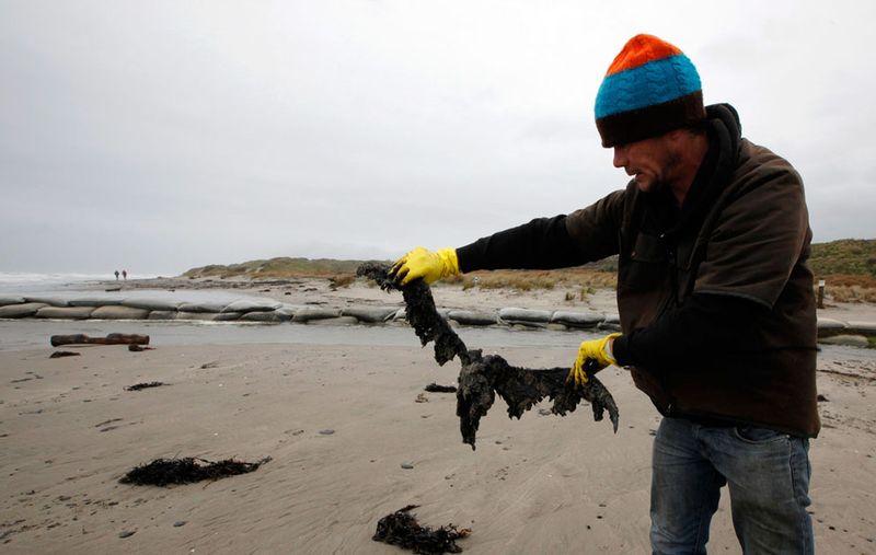 s n22 RTR2SJVM Разлив нефти у берегов Новой Зеландии