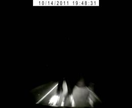 Внезапный конь на ночной дороге