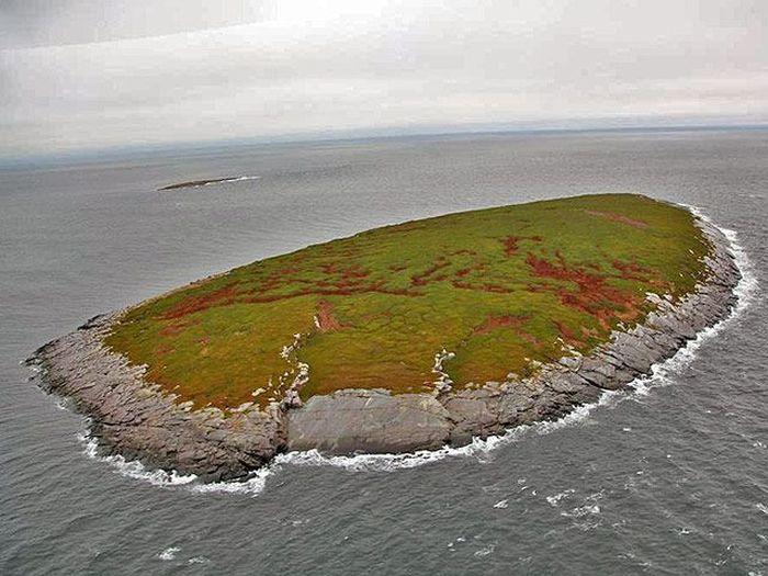 На необитаемом острове в Белом море случайно нашли робинзона (6 фото + 1 видео)