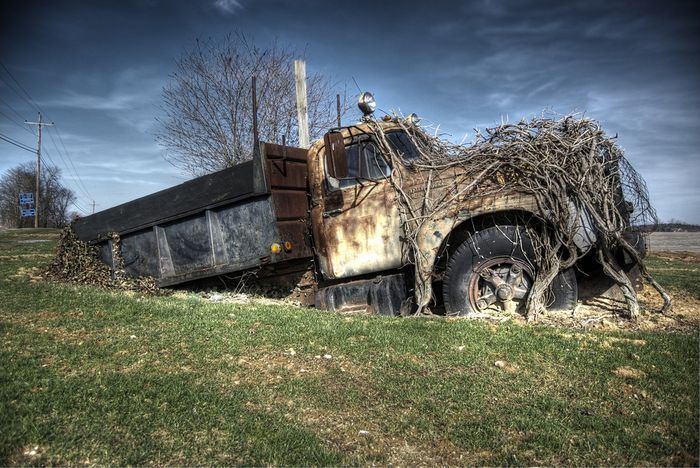 Заброшенные автомобили (45 фото)