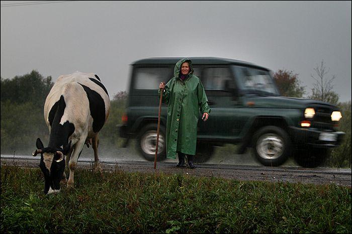 Они не ездят по нашим дорогам... (14 фото)