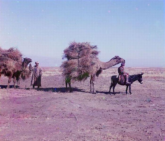 Старые, цветные фотографии Туркменистана (20 фото)