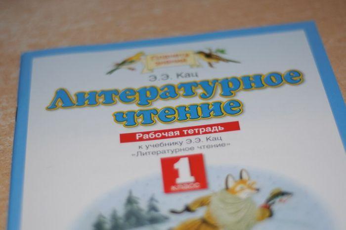 Литературное чтение для 1 класса (8 фото)