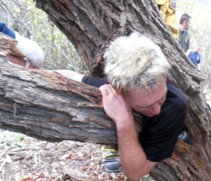 Американец застрял в дупле (5 фото)