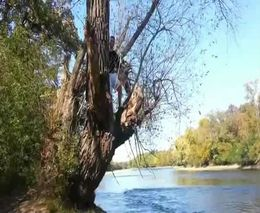 Подборка роликов от 01.10.2012