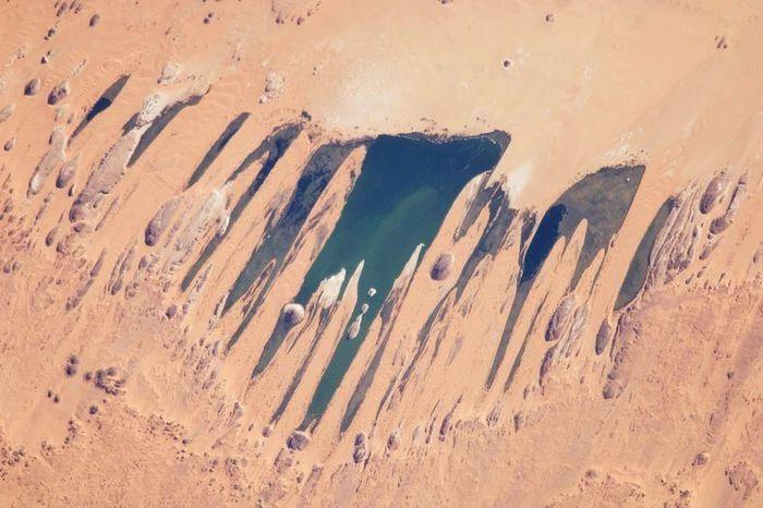 Озера в самом сердце пустыни Сахара (15 фото)