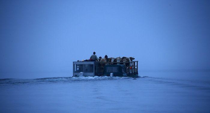 Путь на зимние пастбища (7 фото)