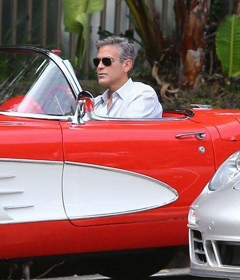 Будни Клуни (6 фото)
