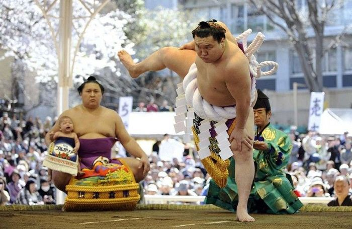 Боевое искусство сумо (16 фото)