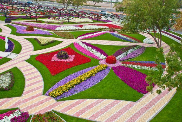 Цветочный сад Аль-Айн (17 фото)