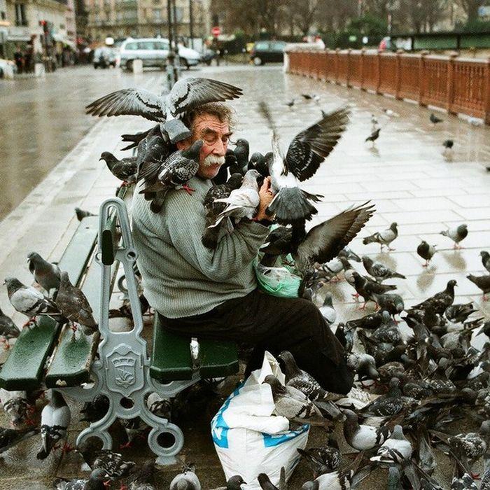 Такое возможно только в России. Часть 7. (51 фото)