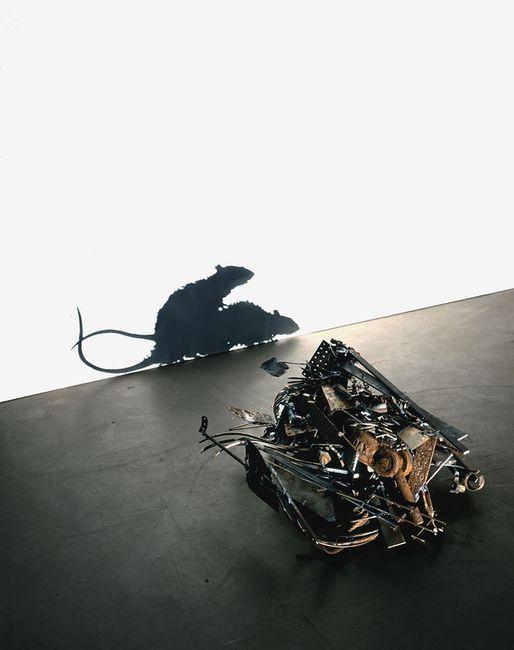 Тени мусора (11 фото)