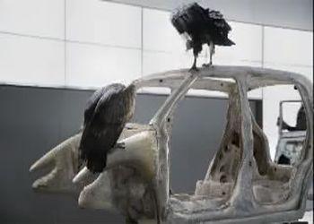 Прикольная реклама дикого авто