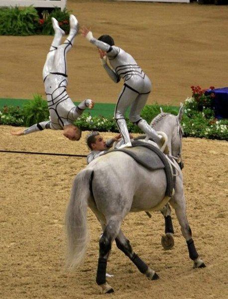 Акробатика на лошадях (10 фото)