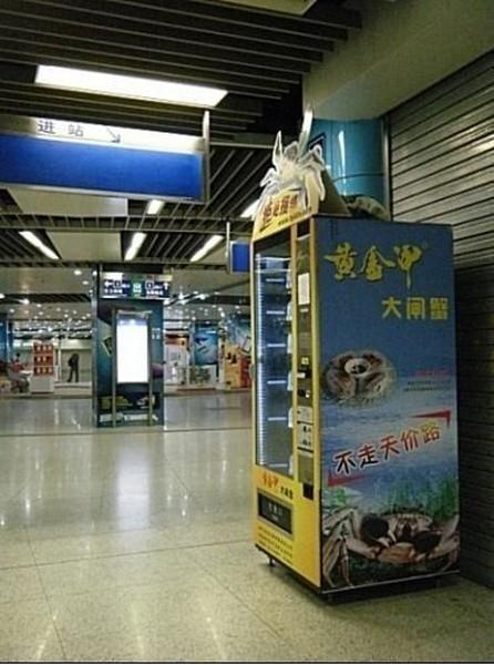 Автомат по продаже крабов (7 фото)