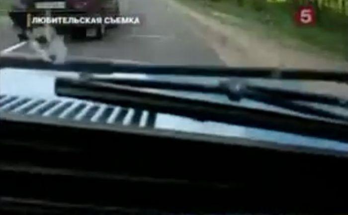 Авария дня часть 69 (фото+видео)
