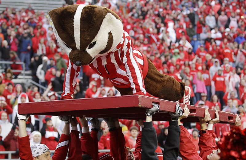 Талисман команды «Wisconsin» делает одно из 83-ех отжиманий, символизирующих количество очков, набранных во второй половине матча футбольной колледж-лиги против команды «Indiana», 13 ноября, Висконсин. (AP Photo/Morry Gash)