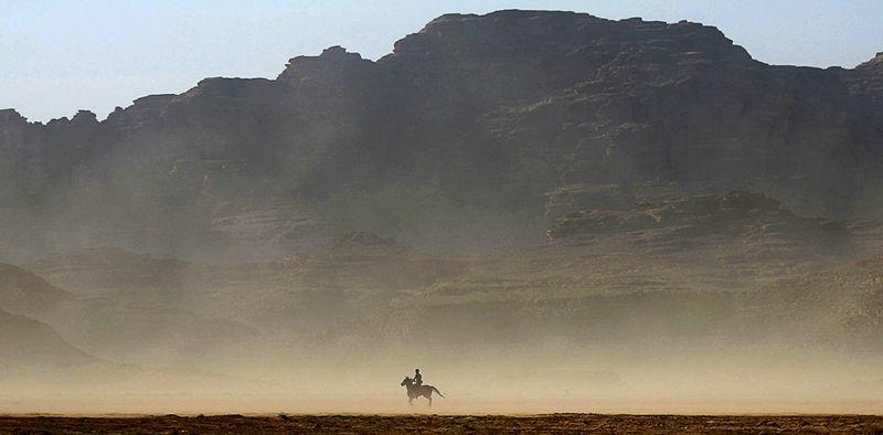 Один из участников скачек «Wadi Rum Endurance Racе», проходящих в пустыне Вади Рам, Иордания, 14 ноября. (AP Photo/Nader Daoud)