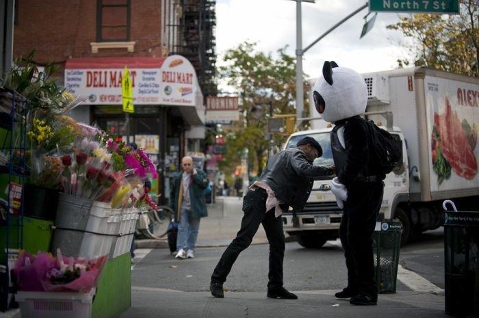 Один день из жизни Панды. Пни Меня! (12 фото)