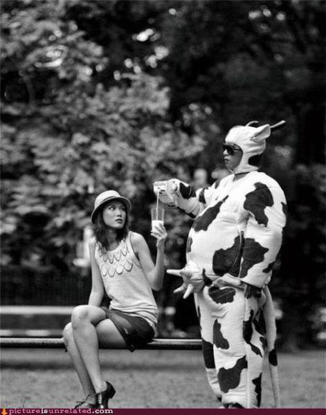 Очень странные и смешные (71 фото)