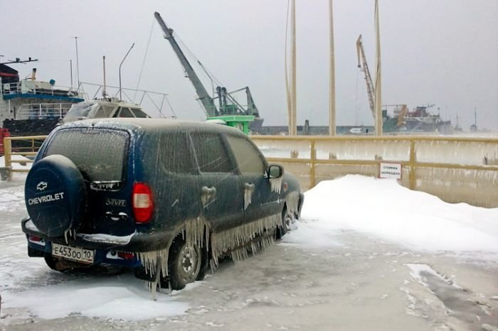 Вот и пришла зима (7 фото)