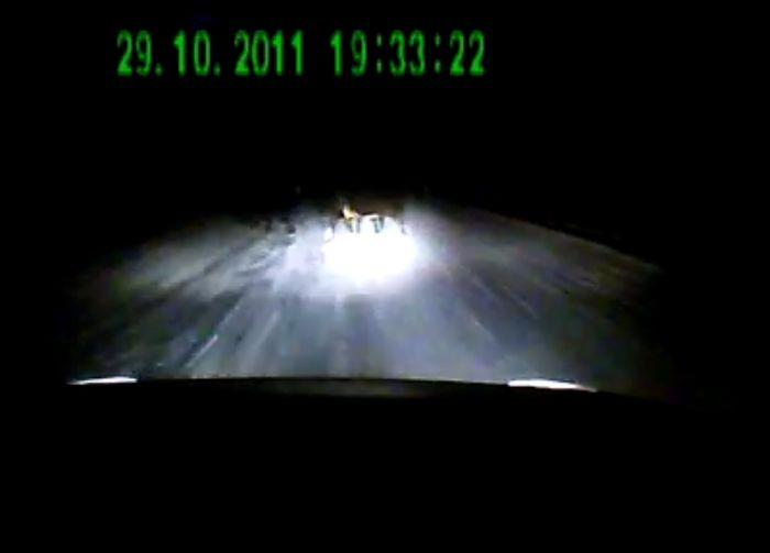 Авария дня часть 347 (фото+видео)