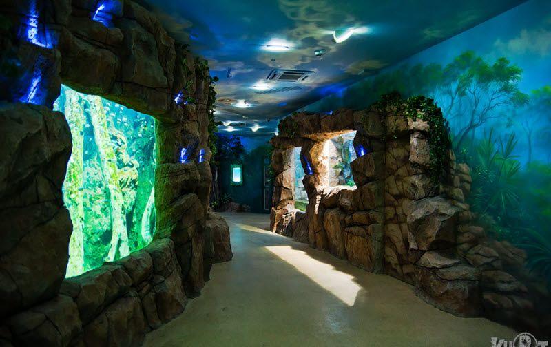 В Москве открылся первый океанариум (17 фото)