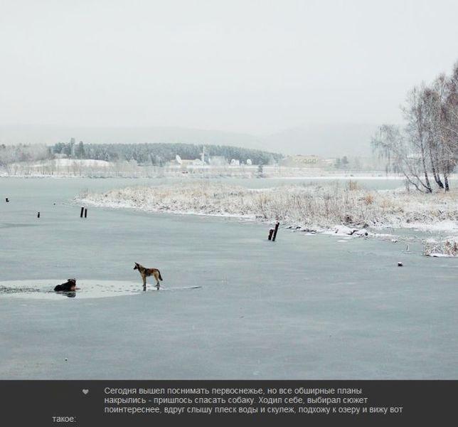 Первая жертва первого льда (7 фото)
