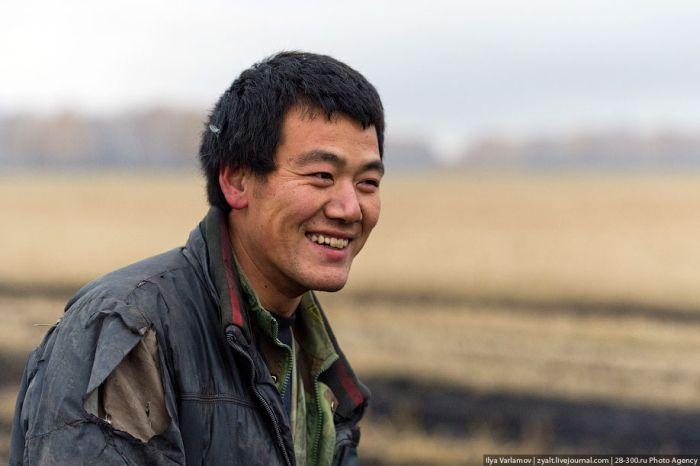 Китайский огород (36 фото)