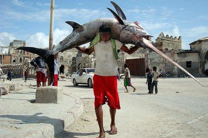 Сомалийские рыбаки (30 фото)
