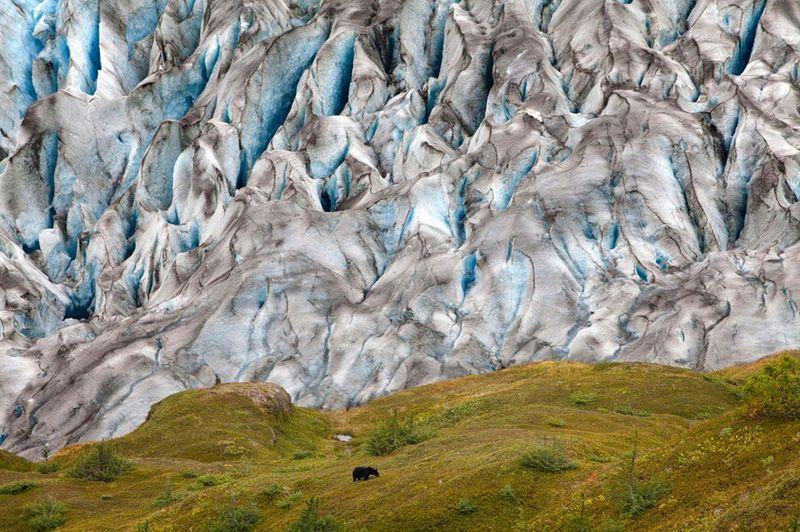Фотоработы с конкурса National Geographic 2011 (47 фотографий), photo:33