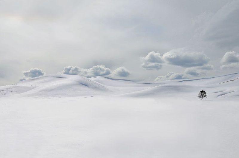 Фотоработы с конкурса National Geographic 2011 (47 фотографий), photo:39